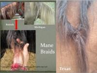 Bigfoot Horse Hair Braiding