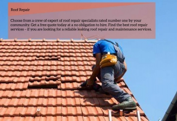 Roof repairs services for leaky and damaged roves.