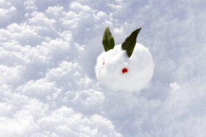 雪だるま以外