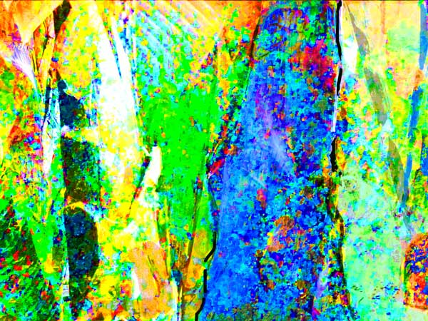 abstract artwork of tropical vegetationn