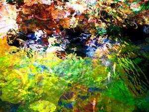 Goldfish pond artwork