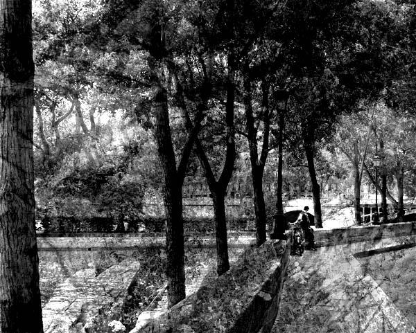 black and white photo of the Seine in Paris