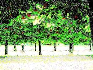 Snowy-Parc-Luxembourg-Paris