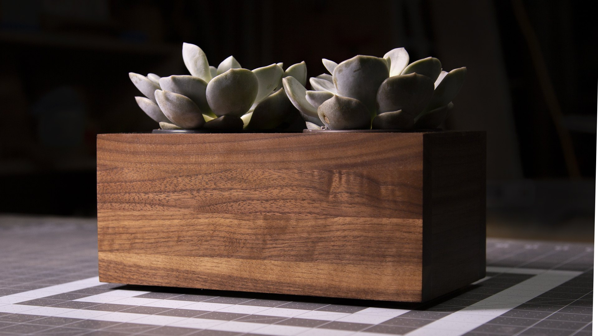 Walnut Planter Box for Succulents