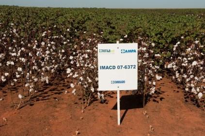 Dia-de-Campo-2012-Sorriso-MT-1412
