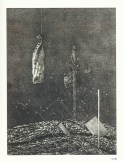 Imagem (30)