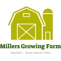 Millers Barn & Silo