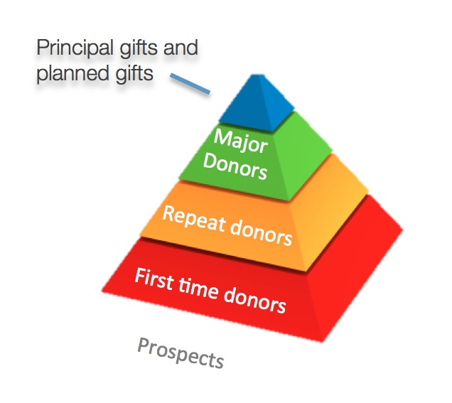 Image result for donor pyramid