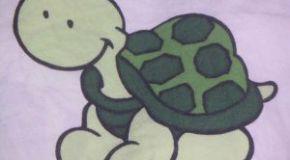 Dudas: Enfermedades de las tortugas