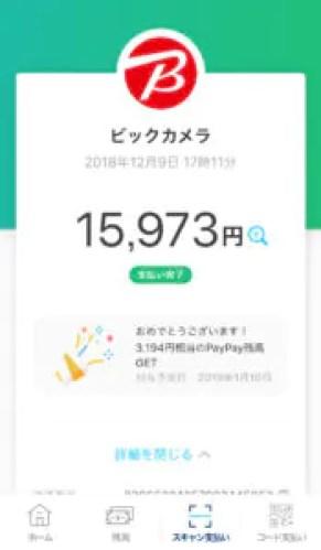 ペイペイ20%キャンペーンの上限は【5万円】までです。つまり?