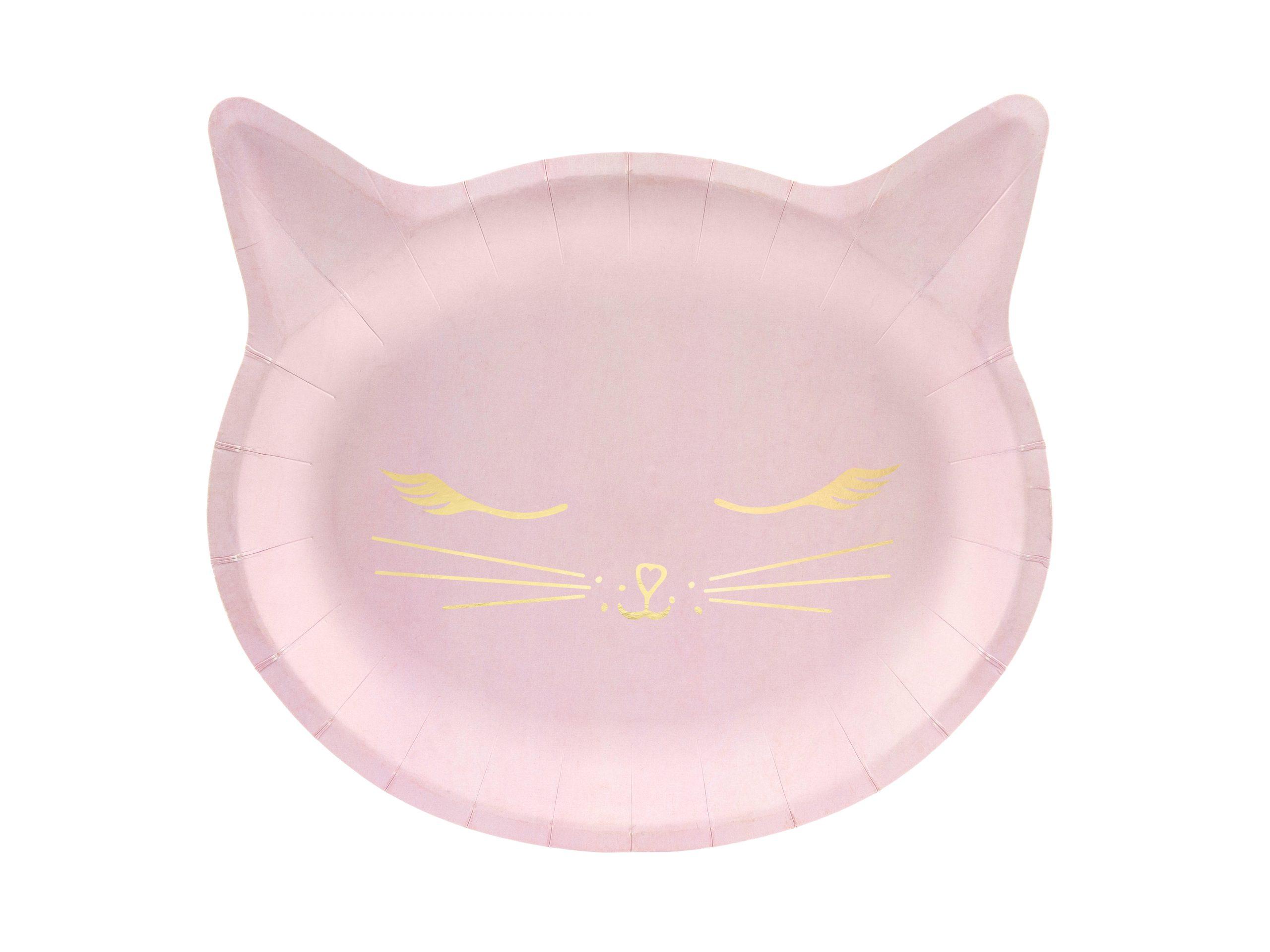 Plato gato