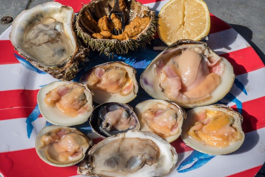 raw shellfish at Randazzo's Arthur Avenue Bronx Little Italy