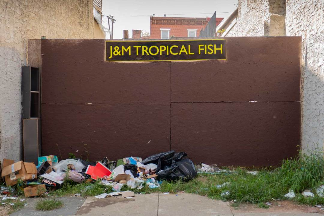 J & M Tropical Fish Pet Store from Rocky Philadelphia