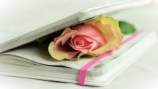 Poetry 2 300x168 - <b>Creating Your Ebook-Ultimate eBook Creator<b> | IM Tools