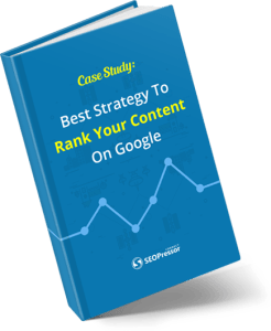 Best strategy to rank your content on google 246x300 - <b>SEOPressor Plugin Bonuses And Video Review<b> | IM Tools