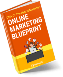 Online Marketing Blueprint 245x300 - <b>SEOPressor Plugin Bonuses And Video Review<b> | IM Tools