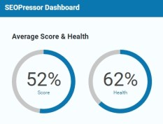 SEOPressor health 300x228 - <b>SEOPressor Cool Tips - Reasons Why You Need It!<b> | IM Tools