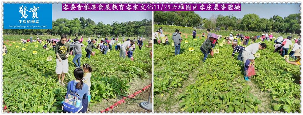 20171125d(驚實)-客委會推廣食農教育客家文化1125六堆園區客庄農事體驗02