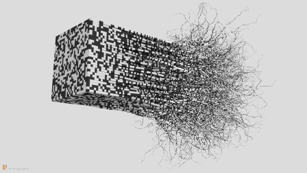binary_kite