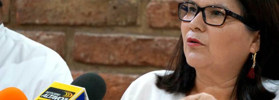 'El dinero privado no puede ser ilimitado en las campañas electorales': Imelda Castro