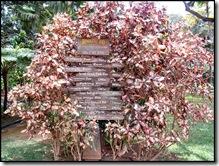 zoo-signs-directions-honolulu