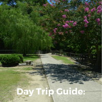 A Day Trip to Windsor, North Carolina