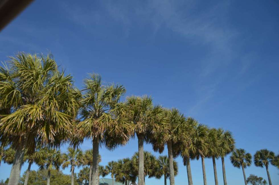 What to Do on Bald Head Island - I'm Fixin' To - @mbg0112
