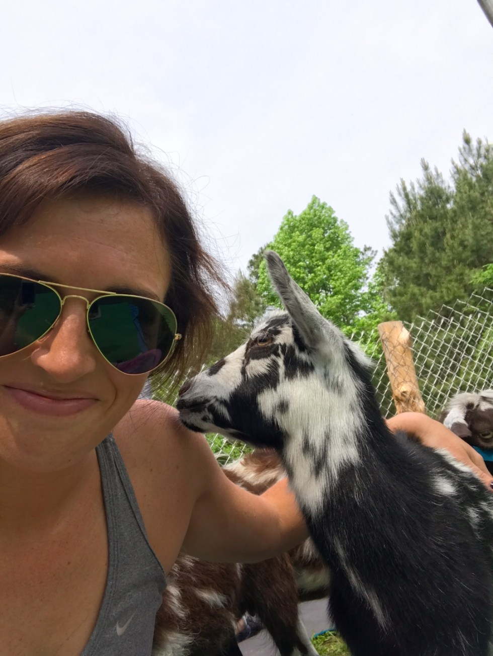 23 Awesome Things To Do in Durham - I'm Fixin' To - @imfixintoblog | Things to do in Durham by popular NC travel blog, I'm Fixin' To: image of a woman standing next to a black and white kid goat.