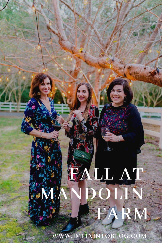 Fall in North Carolina at Mandolin Farm - I'm Fixin' To - @mbg0112