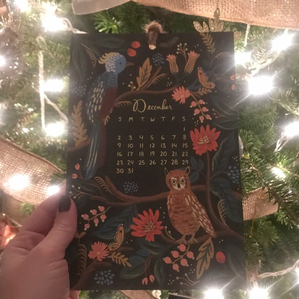 Welcome December + November 2018 Instagram Roundup - I'm Fixin' To - @mbg0112