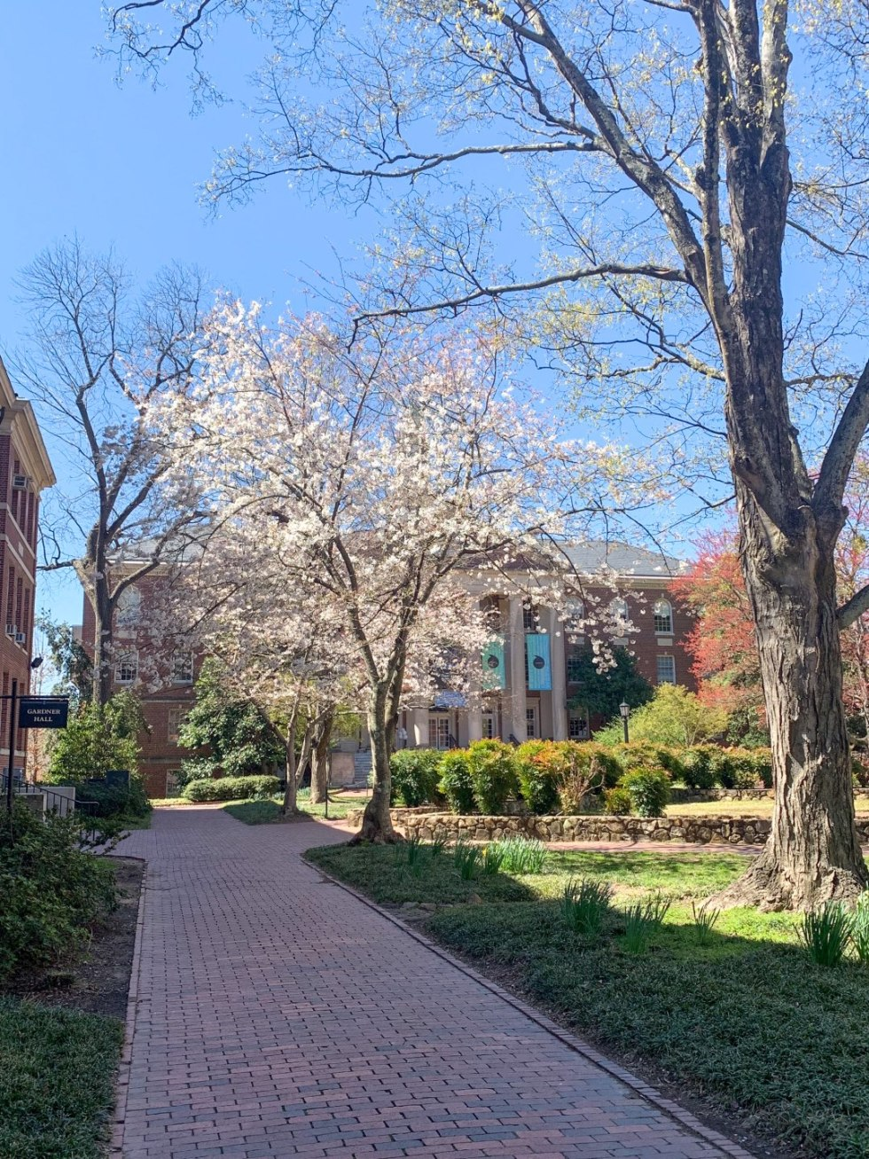 Fun Things to Do in Chapel Hill, NC - I'm Fixin' To - @mbg0112
