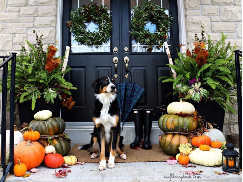 Inspiration Board: Fall Front Porch Ideas - I'm Fixin' To - @mbg0112 | Inspiration Board: Fall Front Porch Ideas by popular North Carolina life and style blog, I'm Fixin' To: image of a front porch decorated with pumpkins, lanterns, and potted ferns.