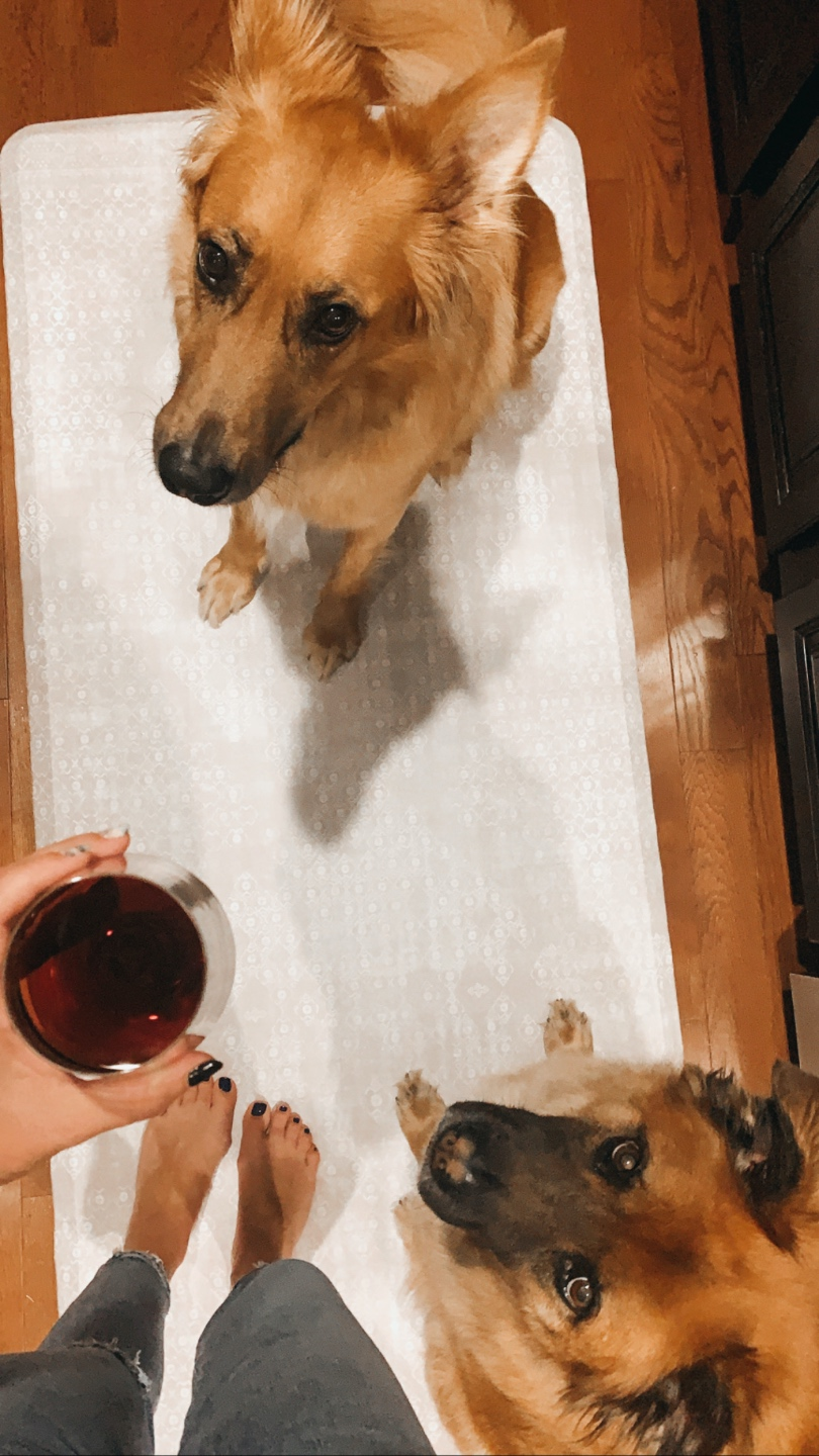 Favorite Purchases by popular N.C. life and style blog, I'm FIxin' To: image of two dogs and a woman holding a glass of red wine sitting on a House of Noah rug.