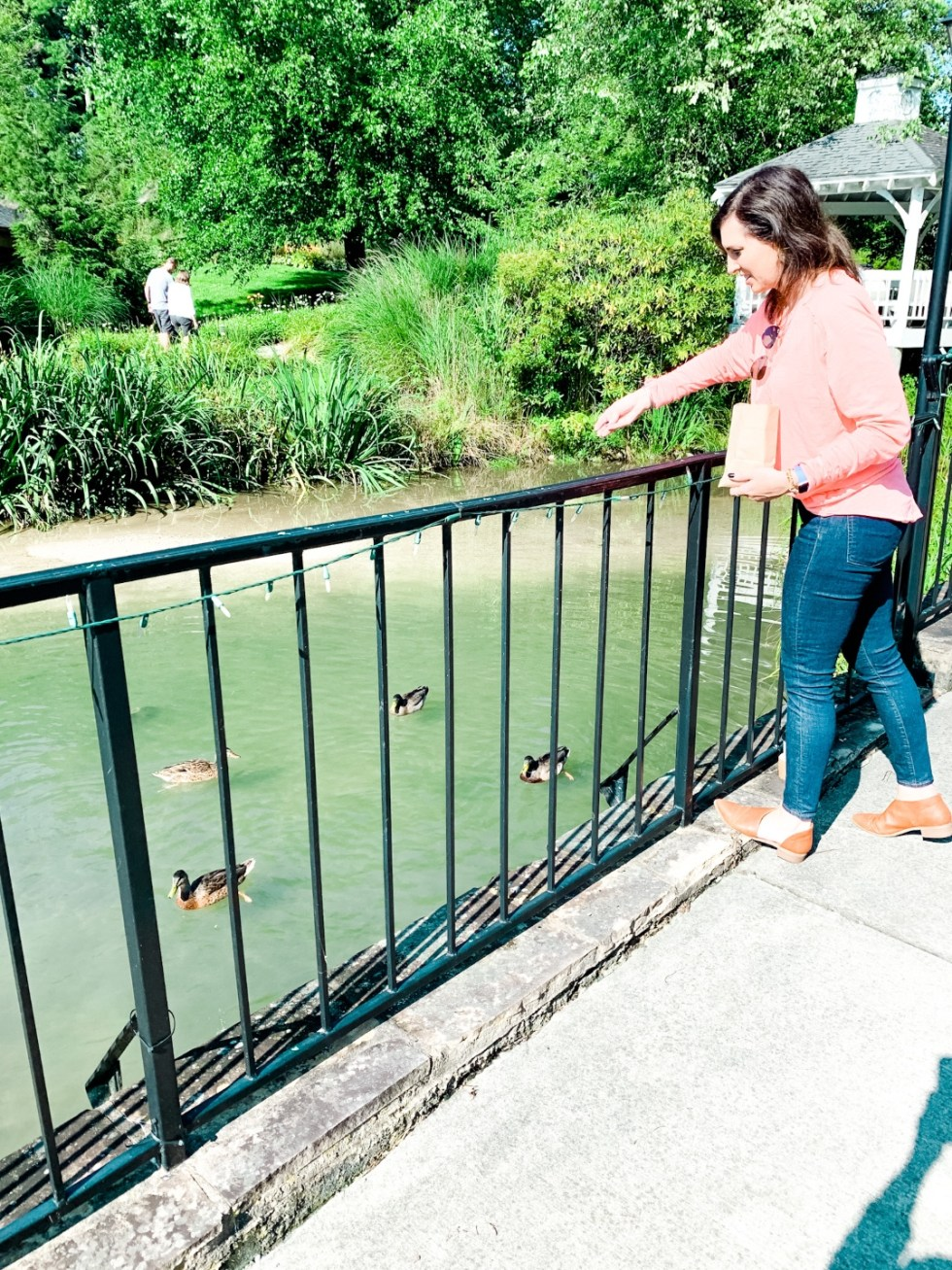 Meadow Brook Inn Blowing Rock by popular N.C. travel blog, I'm Fixin' To: image of a woman feeding ducks at Meadow Brook Inn.