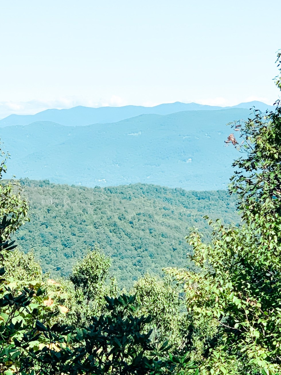 A Casual Weekend in Asheville: the Best Things to Do with your Dogs - I'm Fixin' To - @mbg0112   Weekend In Asheville by popular NC travel blog, I'm Fixin' To: image of BearWallow mountain.