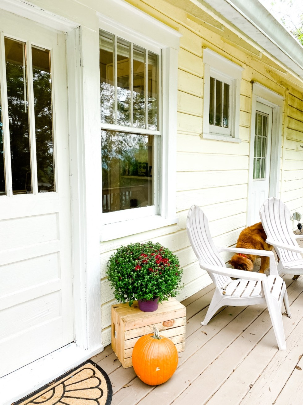 A Casual Weekend in Asheville: the Best Things to Do with your Dogs - I'm Fixin' To - @mbg0112   Weekend In Asheville by popular NC travel blog, I'm Fixin' To: image of a yellow house.