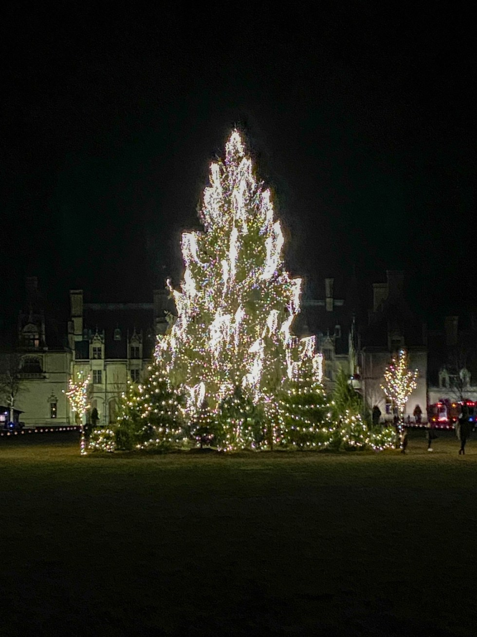 Christmas in Asheville NC by popular NC lifestyle blog, I'm Fixin' To: image of large pine tree decorated with lights at the Biltmore House.