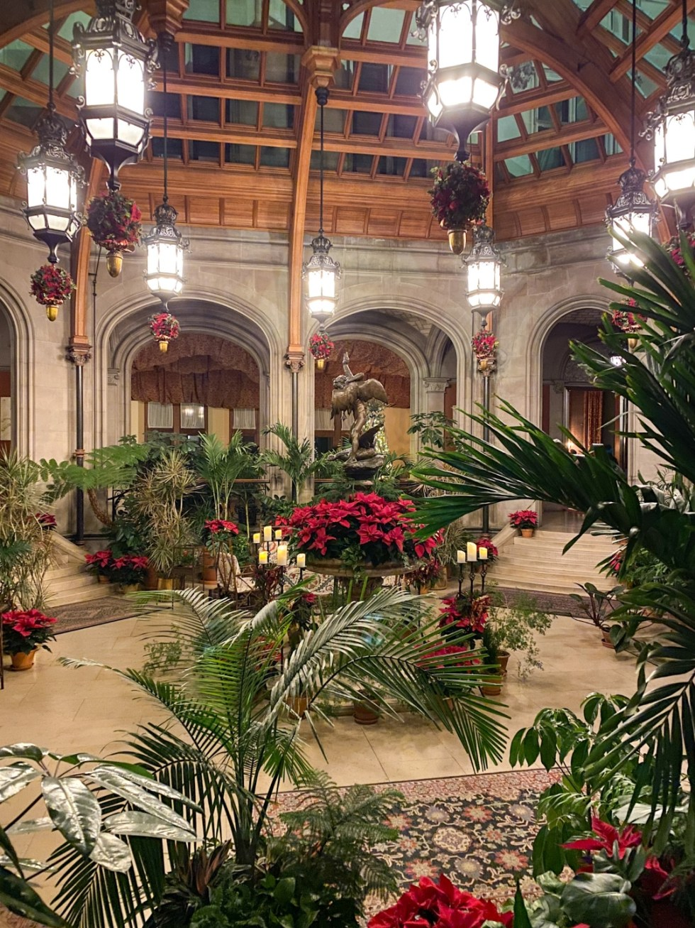 Christmas in Asheville NC by popular NC lifestyle blog, I'm Fixin' To: image of green plats and poinsettia plants inside the Biltmore House.
