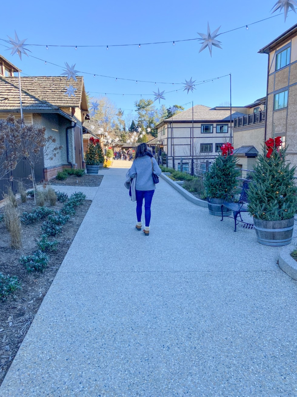 Christmas in Asheville: a Weekend Getaway During the Holidays - I'm Fixin' To - @imfixintoblog |Christmas in Asheville NC by popular NC lifestyle blog, I'm Fixin' To: image of Antler Hill Village.