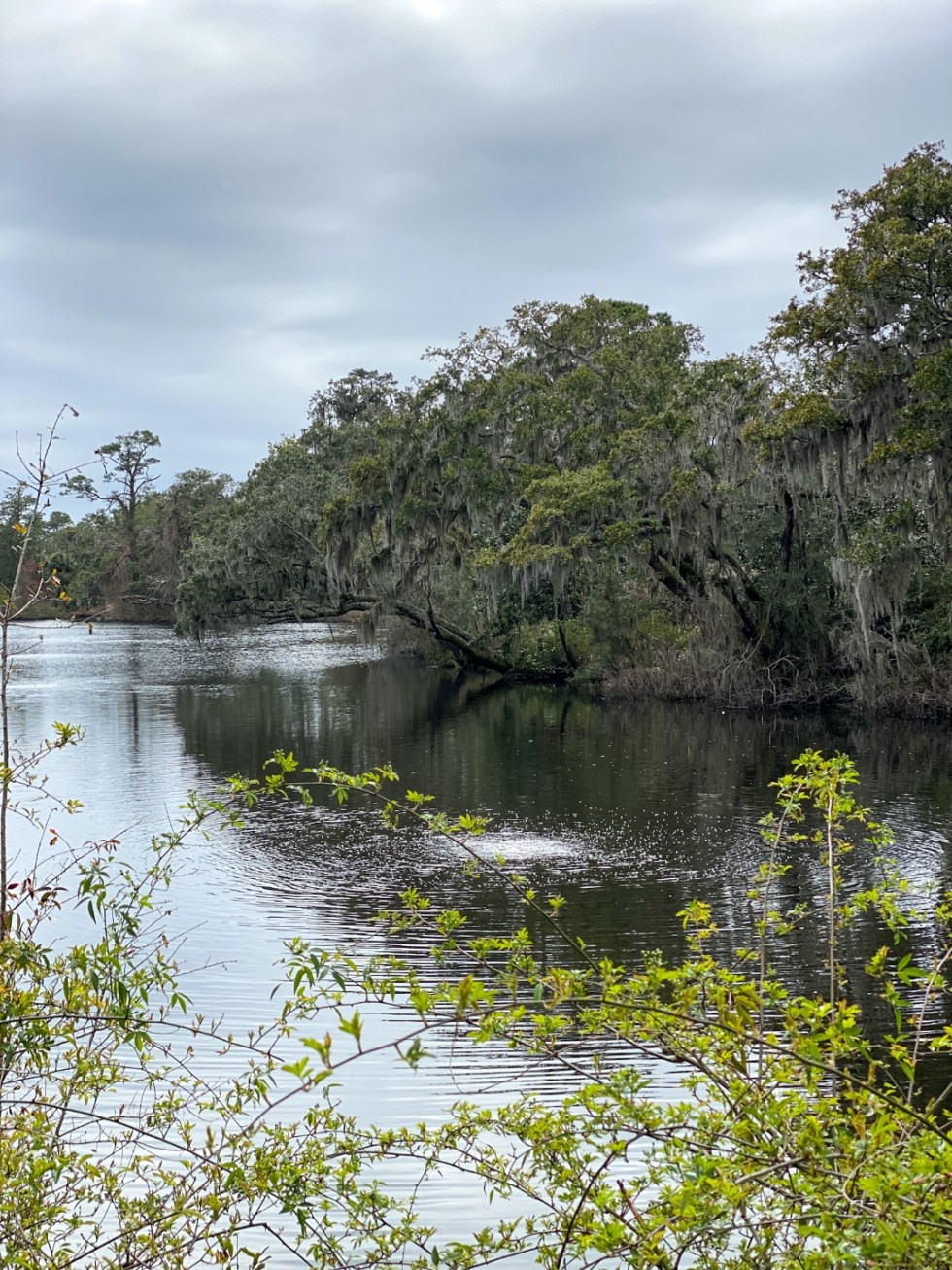 A Spring Weekend in Wilmington, NC: the Best Things to Do - I'm Fixin' To - @imfixintoblog |Weekend in Wilmington by popular NC travel blog, I'm Fixin' To: image of a lake.