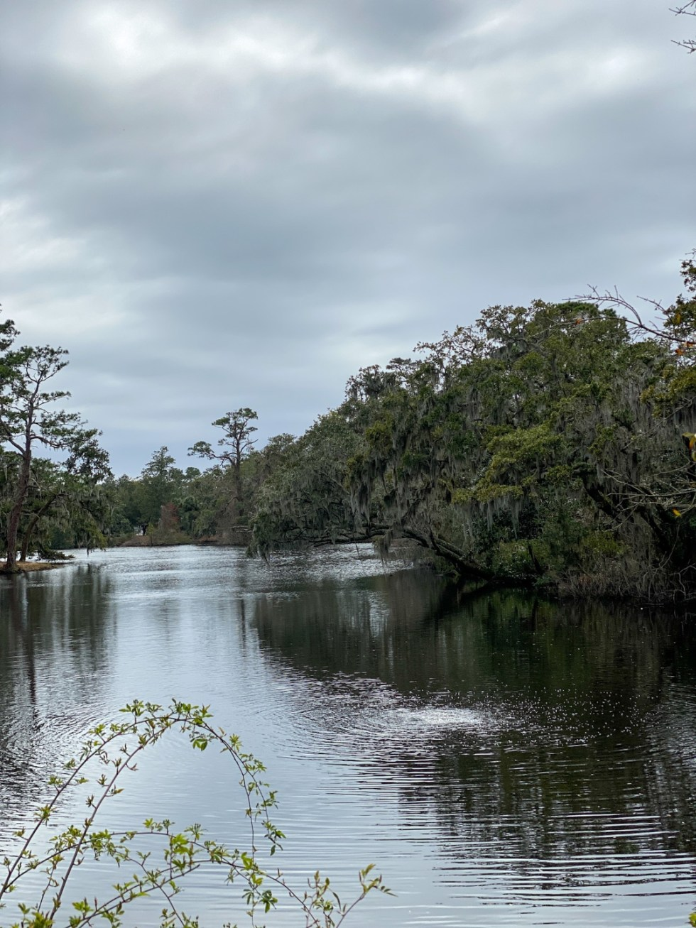 A Spring Weekend in Wilmington, NC: the Best Things to Do - I'm Fixin' To - @imfixintoblog |Weekend in Wilmington by popular NC travel blog, I'm Fixin' To: image of a lake in Airlie Gardens.