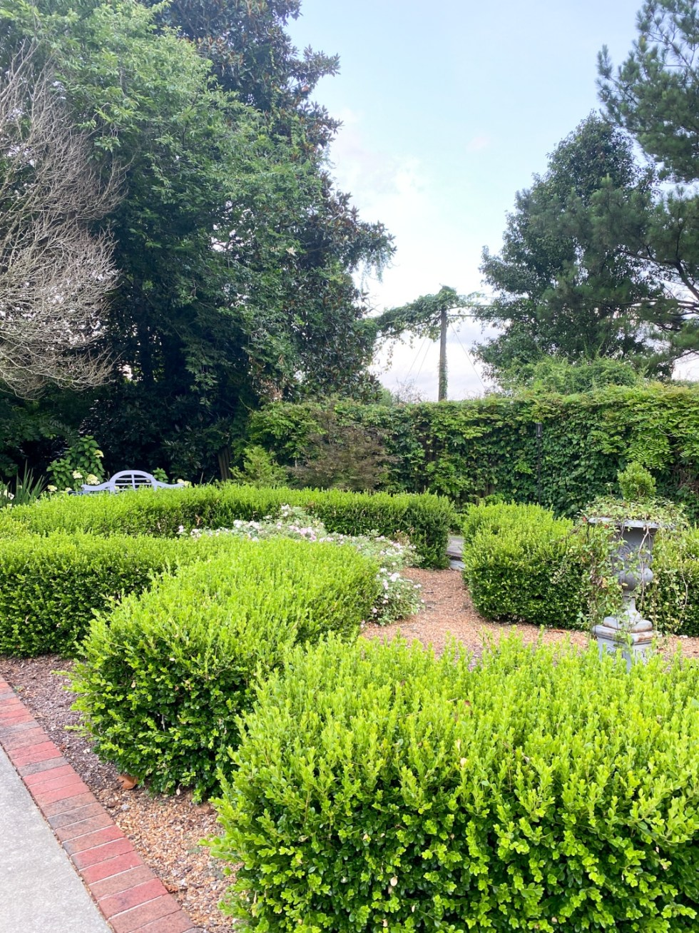 Top 10 Best Things to Do in Edenton, NC: A Complete Travel Guide - I'm Fixin' To - @imfixintoblog | Edenton Travel Guide by popular NC travel guid, I'm Fixin' To: image of a hedge maze.