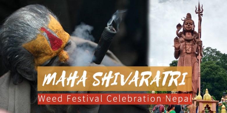 Maha Shivaratri Weed Festival Celebration Nepal