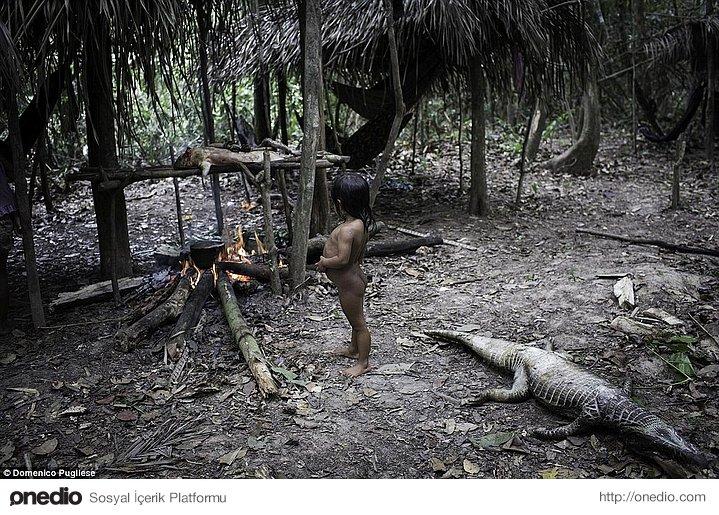 Evcil hayvanları, sert kabuklu yemişleri kırmak ve meyve toplamak konusunda kabileye yardımcı oluyorlar.
