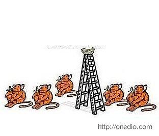 """Maymunlara neden bunu yaptıklarını sormak mümkün olsa cevapları muhtemelen """"Bilmem, burada işler böyle yürür"""" tarzında olurdu."""