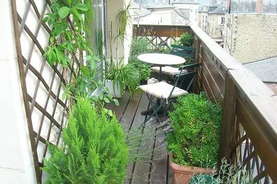 Un balcon verdoyant
