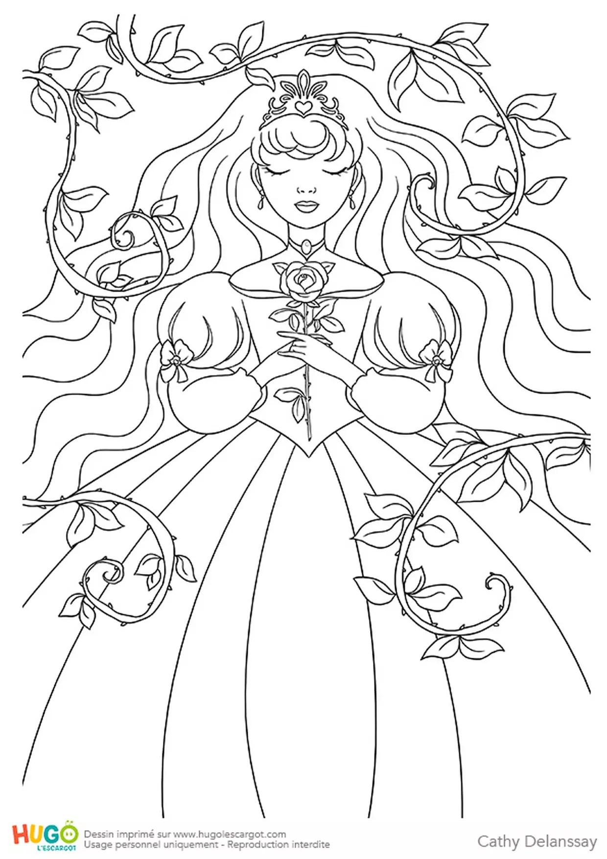 Dessin La Belle Au Bois Dormant : dessin, belle, dormant, Belle, Dormant
