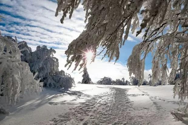 Les Vosges Se Mtamorphosent En Hiver