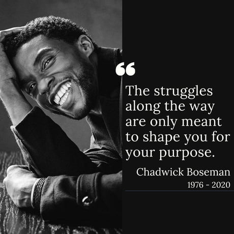 RIP King T'Challa, Wakanda Forever - 9GAG