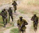 DRC-Rangers